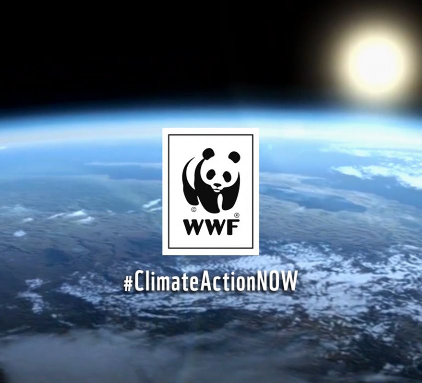 WWF Climate Action Now