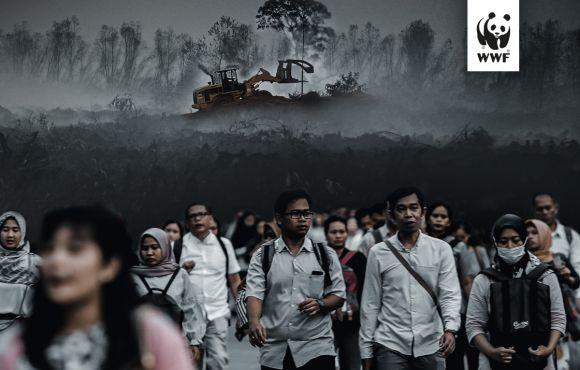 WWF report Pandemia